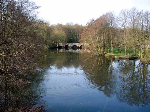 The River Stour at Blandford looks tranquil and picturesque, but its banks are the nesting places of the Blandford Fly