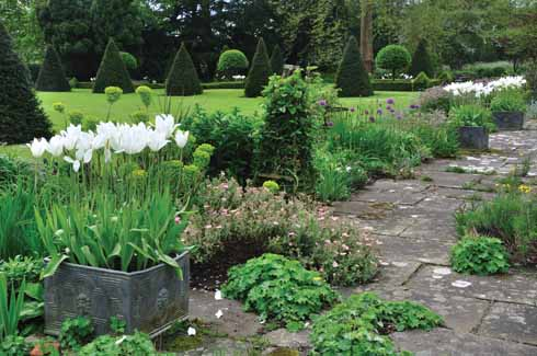 The York stone terrace is punctuated with lady's mantle, a pretty little euphorbia and alliums