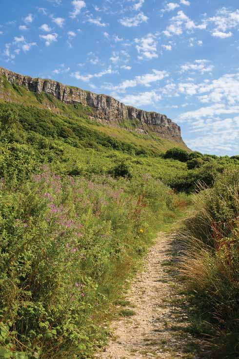 The imposing escarpment