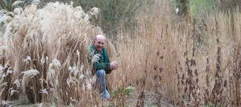Not quite perfectly camouflaged: Neil with some more grasses