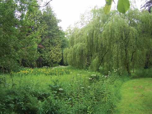 In the Upper Gardens