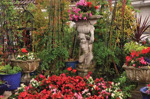 The garden is full of summer bedding plants in vivacious colours: begonias, impatiens, petunias and pelargoniums