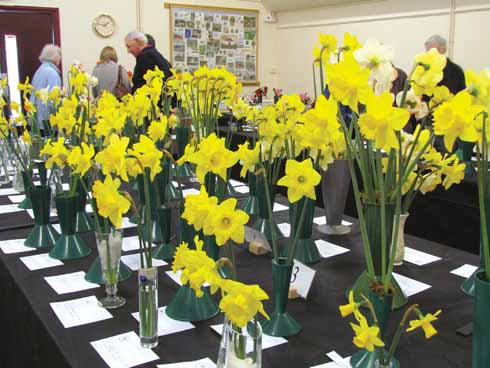 A judging bench at the society's spring show