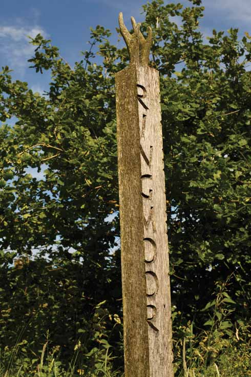One of the carved footpath signs on the route