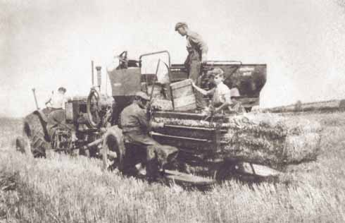 The boy helping to work this five-man baler in the 1940s is Jim Richards, and it is the very machine on which his father had suffered a fatal accident not long before. On top of the baler is Cecil Joyce, who was driving the tractor on that disastrous day and had to run all the way back to the farm to get help.