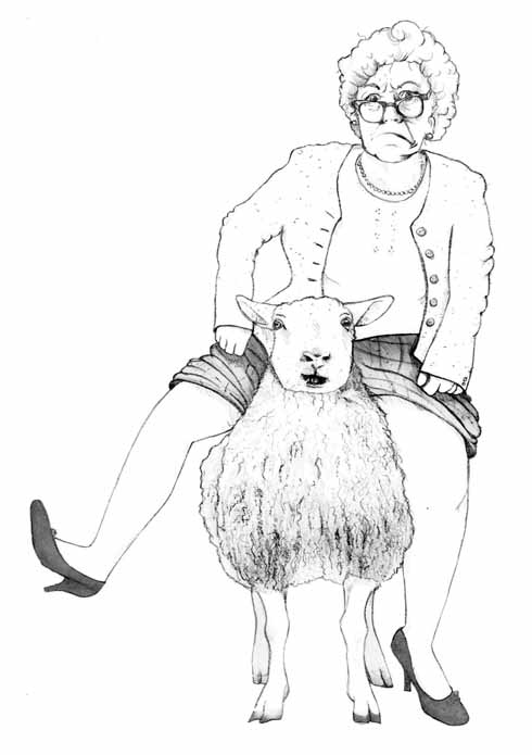 'Her only option...was to open her legs, effectively straddling the middle ewe'