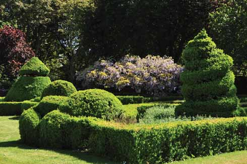 A view of the topiary garden: it is a wonderful mix of formal elegance, with its box-edged beds and topiary, enclosing the imaginative box sculptures within