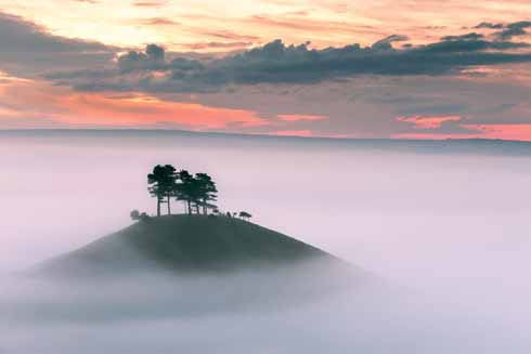Spring morning mist isolates Colmer's Hill from the rest of West Dorset
