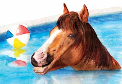 'Sparky, a hot-and-bothered pony... plunged into a garden swimming pool and had to be rescued by firemen'