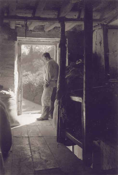 Miller Harry Elkins looks out from the mill (Sturminster Newton Museum & Mill Society)