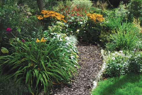 A winding path leads you into the secluded bog garden