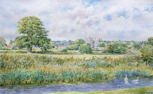 Wimborne Minster seen from the meadows by Clive Hannay