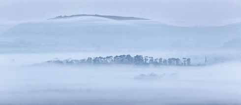 St Bartholemew's spire, with its characteristic mini-flying-buttresses, peeps out of the Sutton Waldron mist in this shot taken from Hambledon Hill looking towards Melbury Beacon