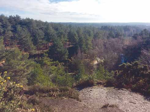Looking south-east from the top of the tumulus at Stephen's Castle. On the right is one of the ponds formed from past sand and gravel working; on the left is the edge of Ringwood Forest.