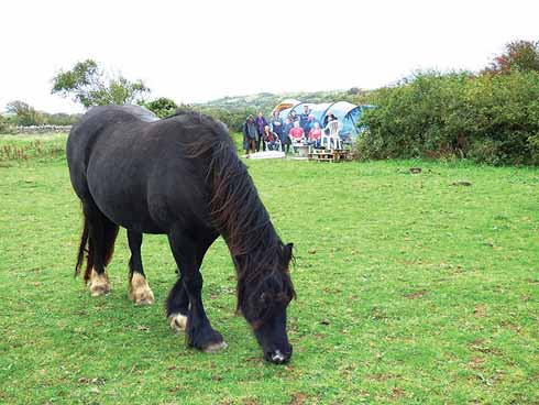 The California Quarry protectors (behind the horse) intent on preventing fracking from happening in Swanage moved onto the land. They left in early December 2016 after the temporary exploration licence elapsed