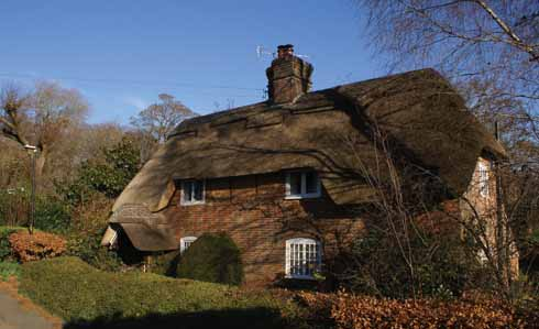 Thatched as well as slate and tiled roofs are on show in Canford Magna
