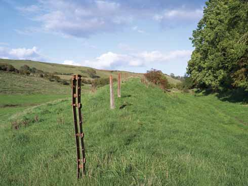 Cast and galvanized iron fencing posts mark the boundary of a shallow cutting close to Loders. The distinctive winding straining pillars and fence post caps were manufactured by Francis Morton and Co. of Liverpool.