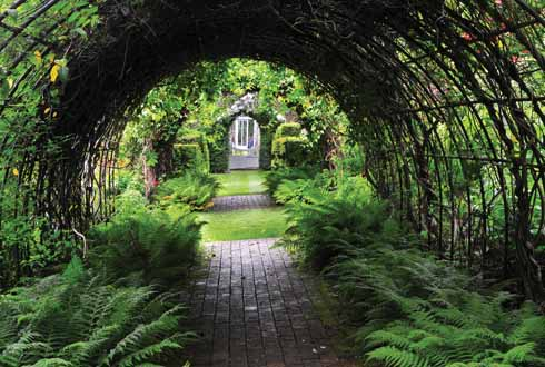 The green tunnel looking towards the greenhouse