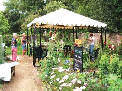 The Victorian Garden Harvest