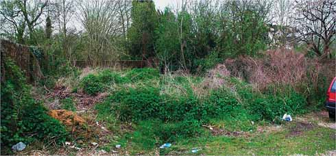 How the Victorian Garden looked before it was cleared