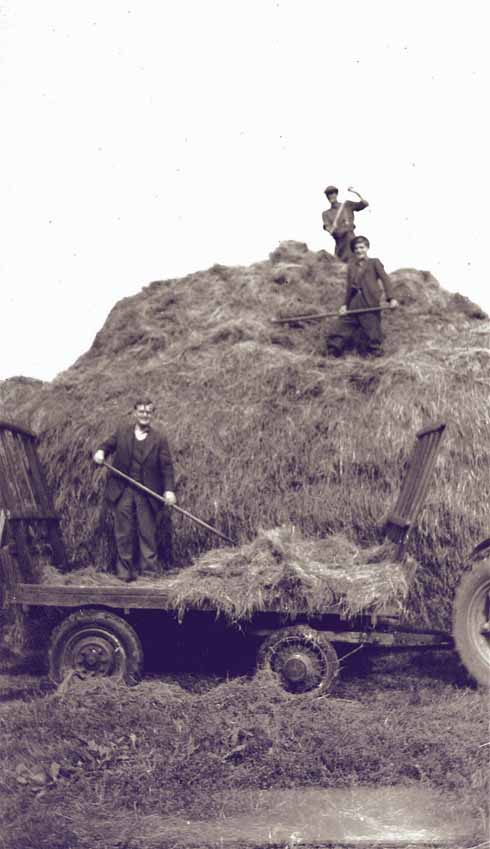 Members of the Wallbridge family (Leslie, Michael and Pat) building a haystack during the late 1940s.
