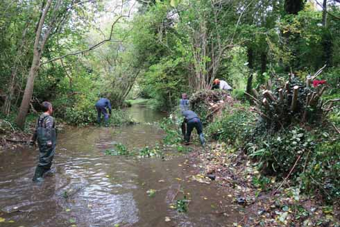 A work party on Bere Stream controlling some of the faster growing trees (Tony Bates MBE)