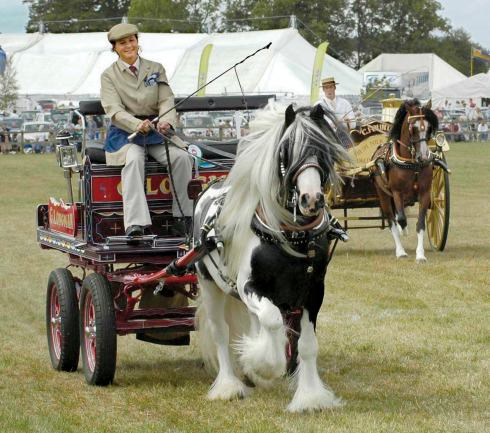 The old trade carts and wagons are always well received